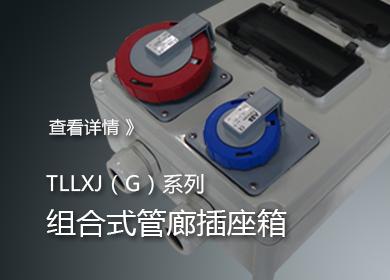 组合式管廊插座箱